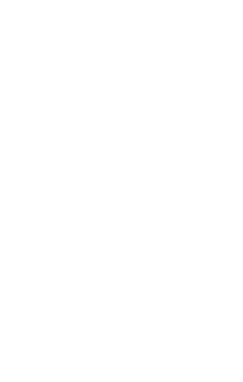 Brain Shoppe Logo